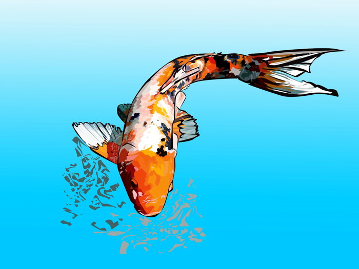 koi carp art fish nature animals gigantic print poster ebay. Black Bedroom Furniture Sets. Home Design Ideas